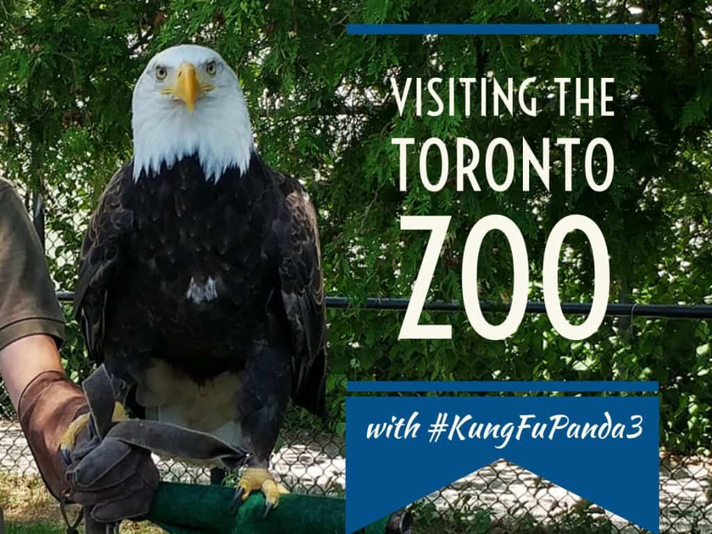 Visiting the Toronto Zoo with Kung Fu Panda 3