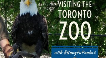 Visiting the Toronto Zoo with #KungFuPanda3