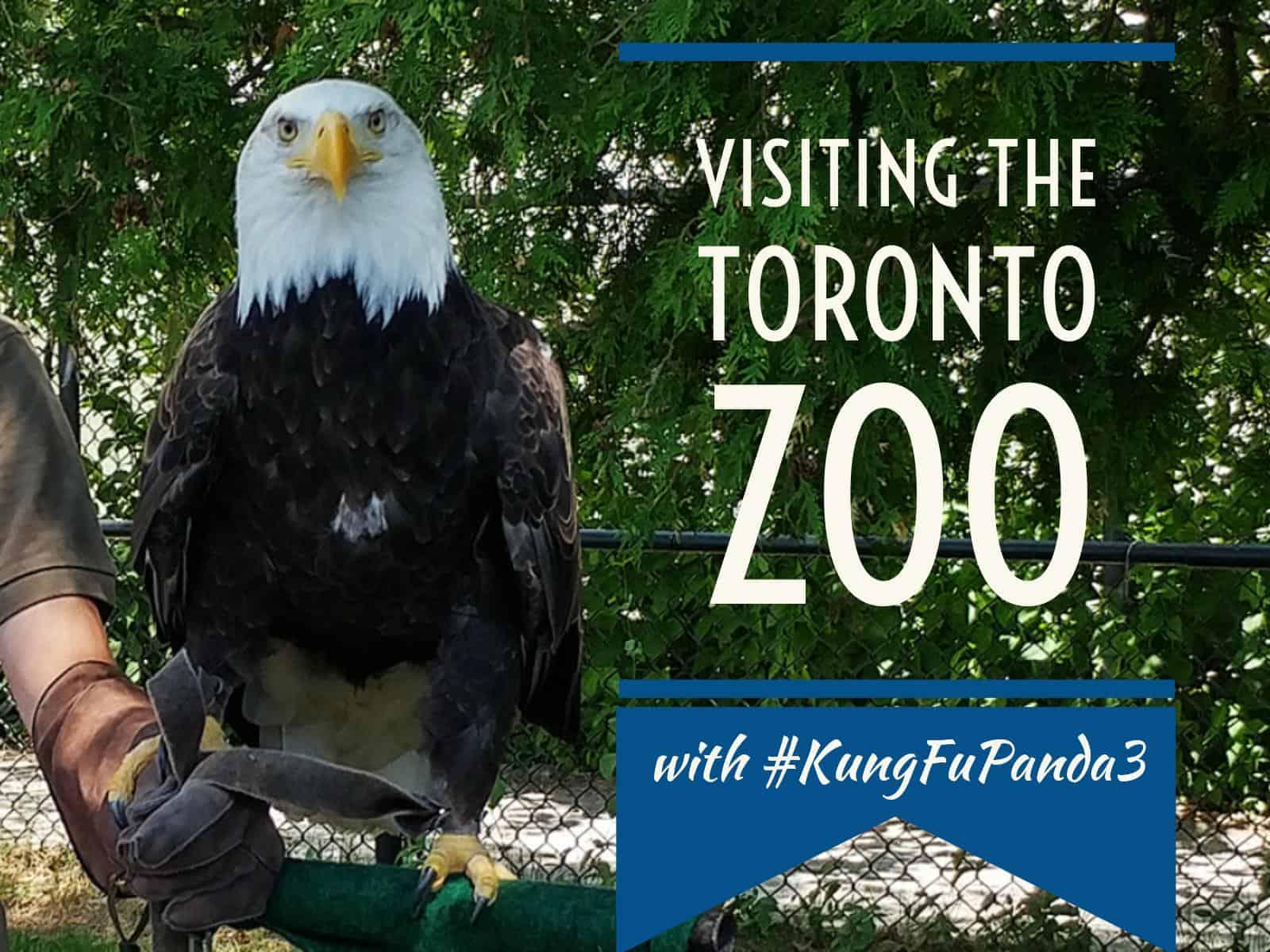 Visiting the Toronto Zoo with Kung Fu Panda 3