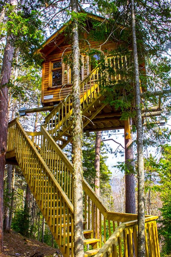 Cozy Tree House Unique Stay Parc Aventures Cap Jaseux Quebec Saguenay
