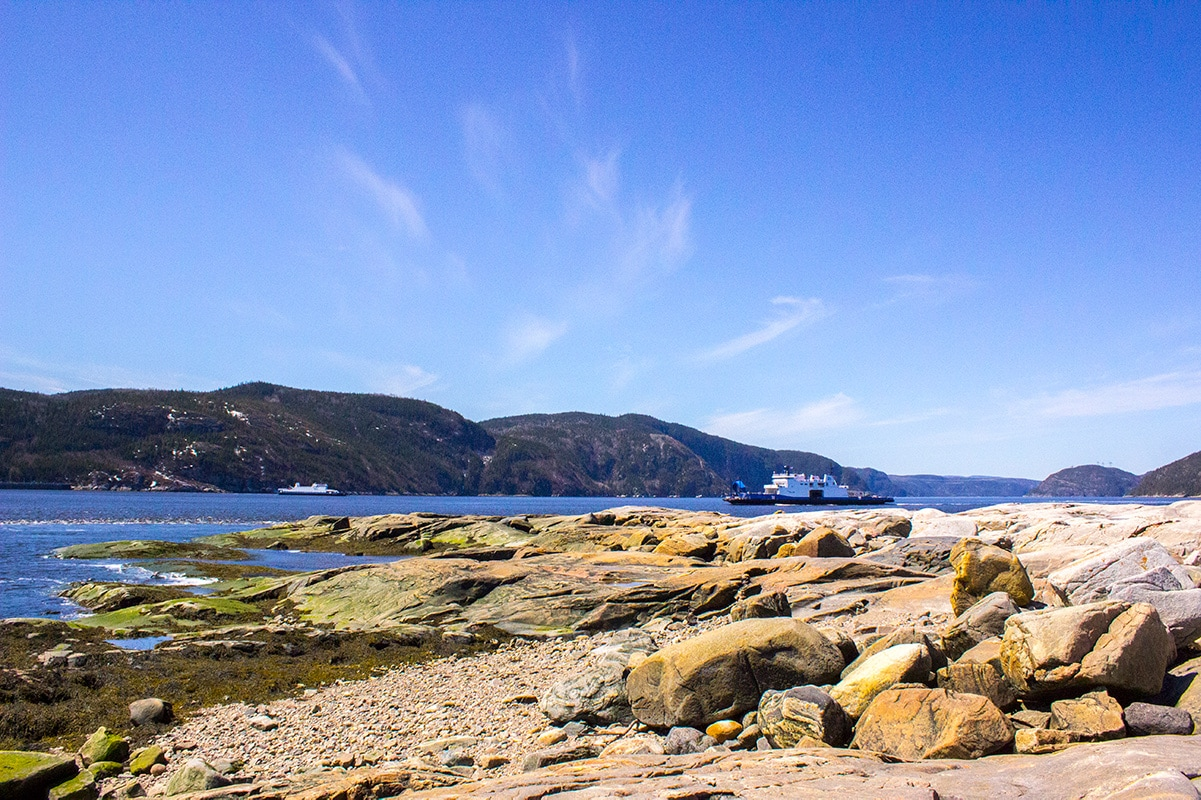 Looking out for Beluga Whales with Paula Inkscrblr Tadoussac Quebec
