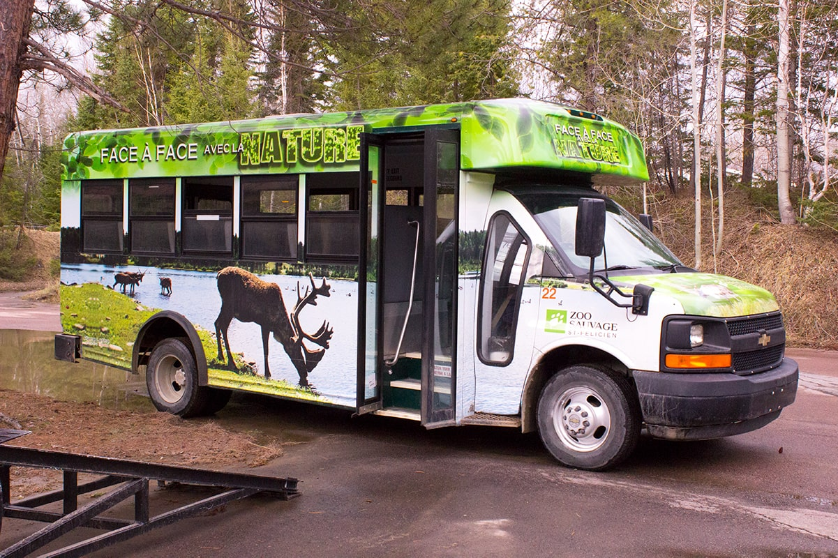 Zoo Sauvage de St-Felicien Tour Bus Lac-Saint-Jean Quebec Maritime