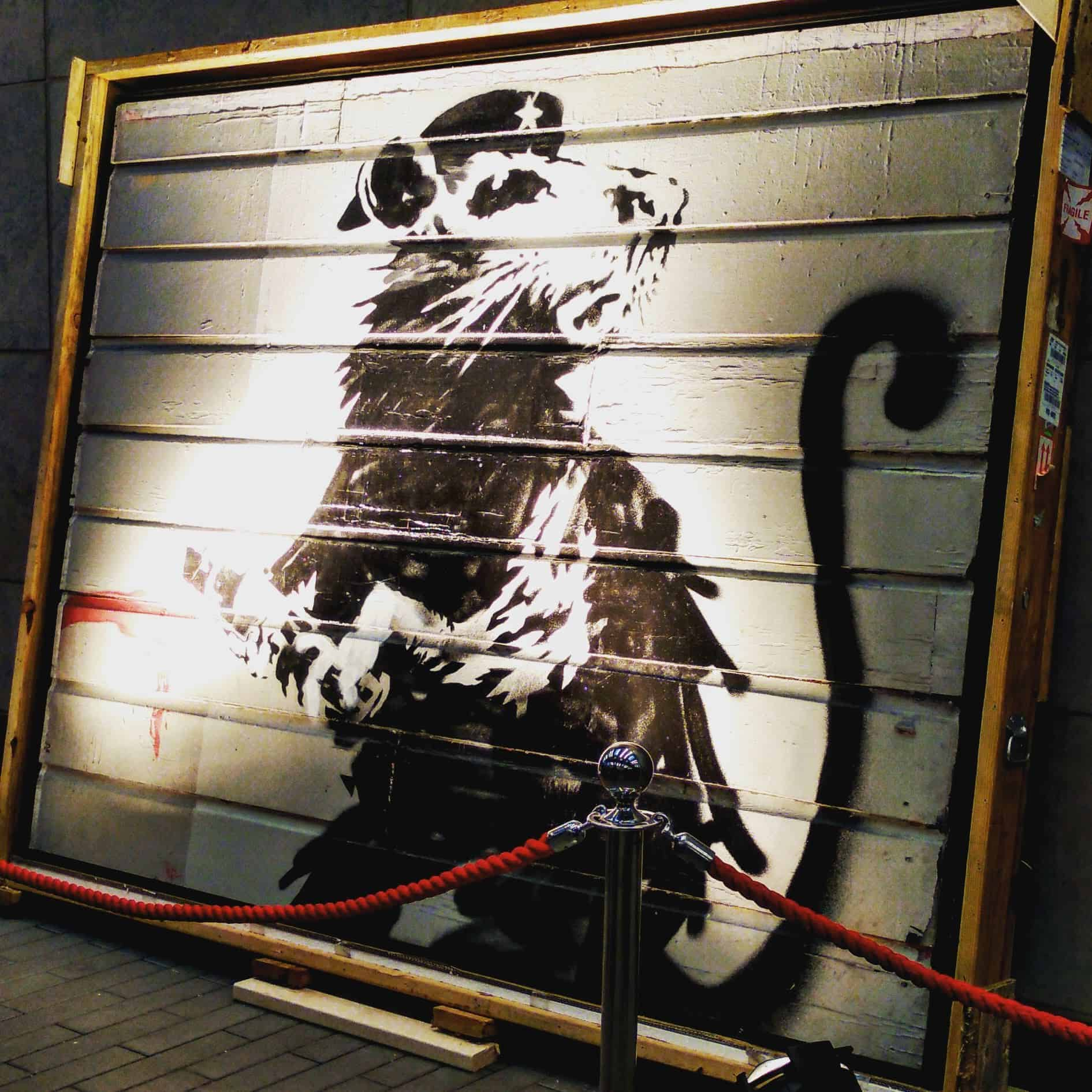 World Reknowned Graffiti Artist Banksy - Rat
